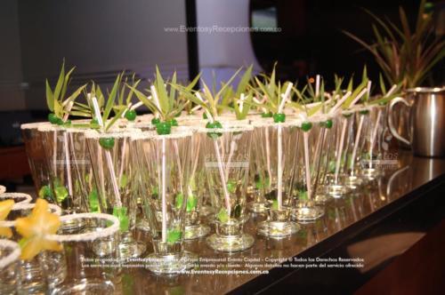 bebidas cristaleria (3)