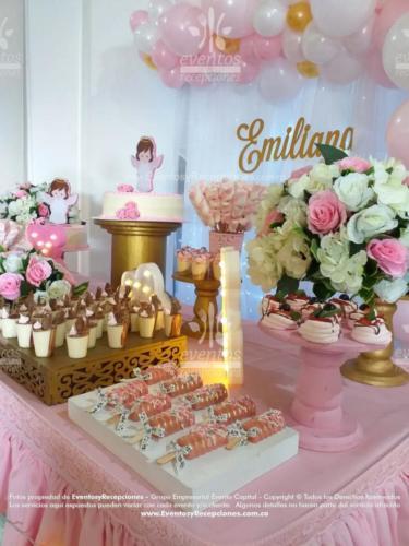 mesa de postres peluches rosada (1)