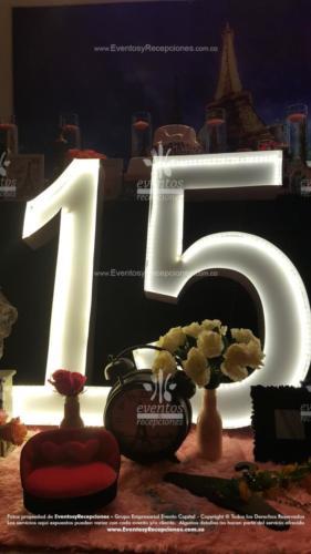 tematica coco chanel (45)