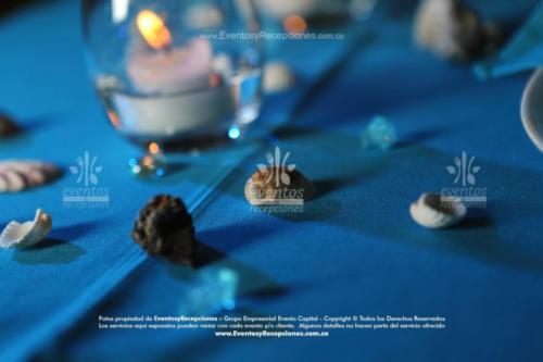 tematica oceano mar (8)