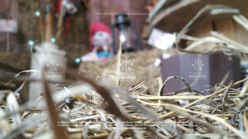 tematica sheriff callie accesorios peluche cantinas caballos escalera (10)
