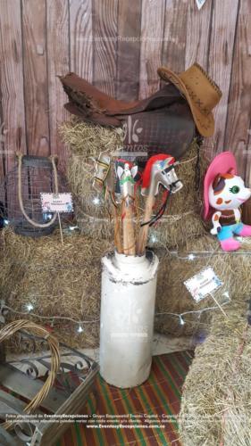 tematica sheriff callie accesorios peluche cantinas caballos escalera (6)