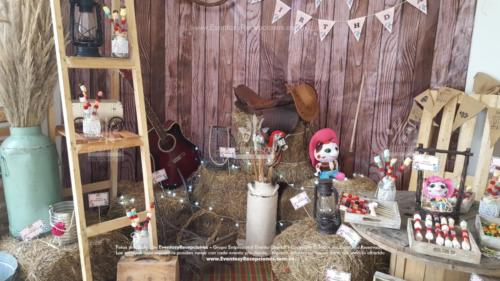 tematica sheriff callie stand fotografia (3)