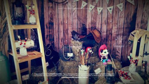 tematica sheriff callie stand fotografia (6)